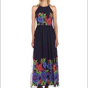 Taylor Women's Zinnea Border Floral Long/Full Maxi